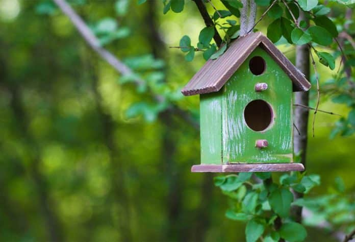 Fabriquer un plan de nichoir et mangeoire pour oiseaux, les outils nécessaires