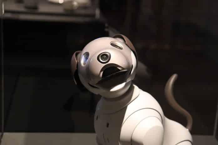 meilleurs chiens robots jouets
